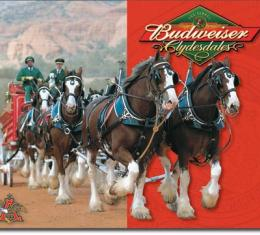 Tin Sign, Budweiser - Clydesdales