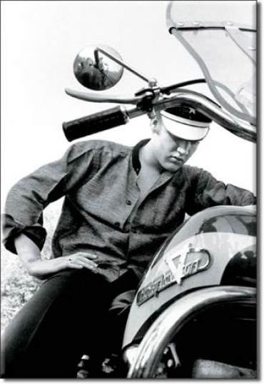 Magnet, Elvis Wertheimer