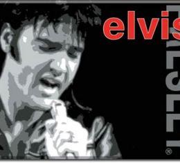 Magnet, Elvis w/mic