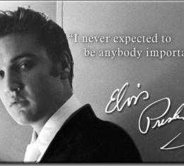 Magnet, Elvis Important