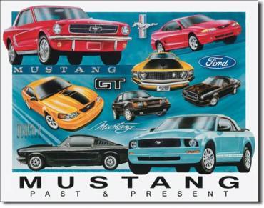 Tin Sign, Mustang Chronology