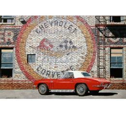 Corvette The New Delivery, Fine Art Print By Dana Forrester, 11x17