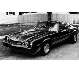 Camaro Strip Kit, Z28, Silver Charcoal, 1980-1981