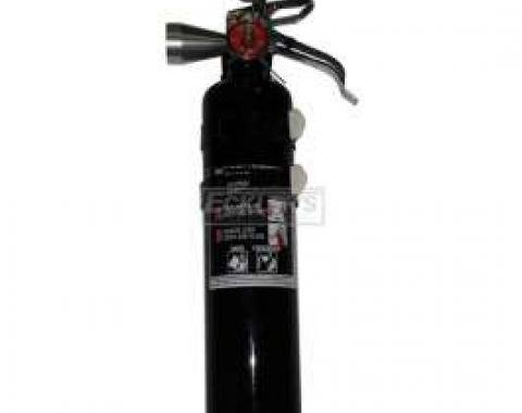Fire Extinguisher, H3R Halguard, Black, 2.5 Lb.