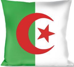 Buckle-Down Throw Pillow - Algeria Flags